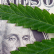 Cannabis Reimbursement